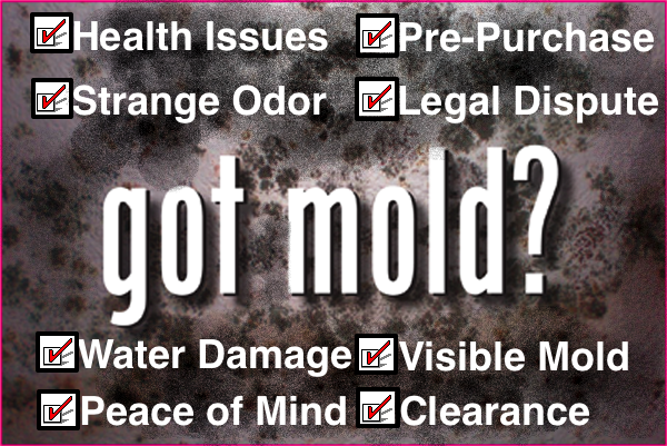hazards of mold